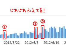 GoogleAdSense導入に至った、20PV/日から500PV/日までの推移