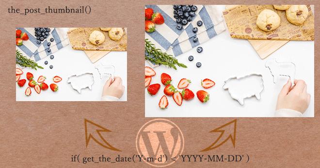 [WP] the_post_thumbnail() 画像の出力方法を the_date() で条件分けする